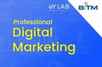 Professional Digital Marketing   BITM Training