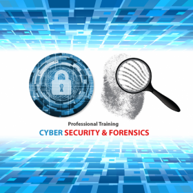 Professional Training on Cyber Security & Forensics