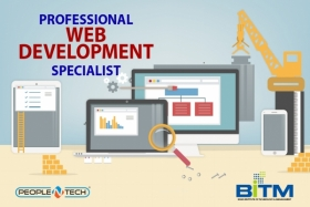 Professional  Web Development Specialist