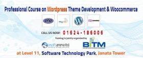 Professional Course on Wordpress Theme Development  & Woocommerce