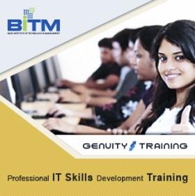 Professional ICT Skills Development Training