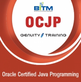 Oracle Certified Java Programming (OCJP)