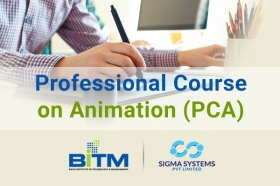 Professional Course on Animation (PCA)